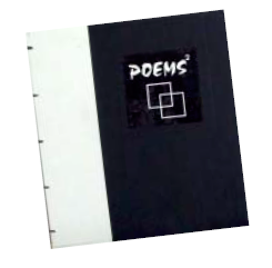 cover of Poems Squared book